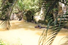 River running through Cueva del Indio