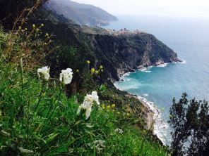 Rough coastline