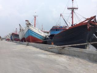 Sailing Cargo Harbour