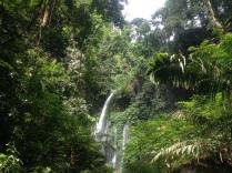 Waterfall-tour