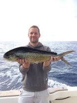 The beautiful Mahi Mahi